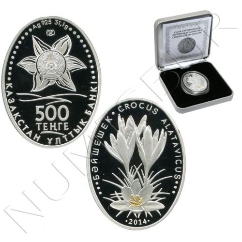 500 tenge KAZAJISTAN 2014 - Crocus Alatavicus