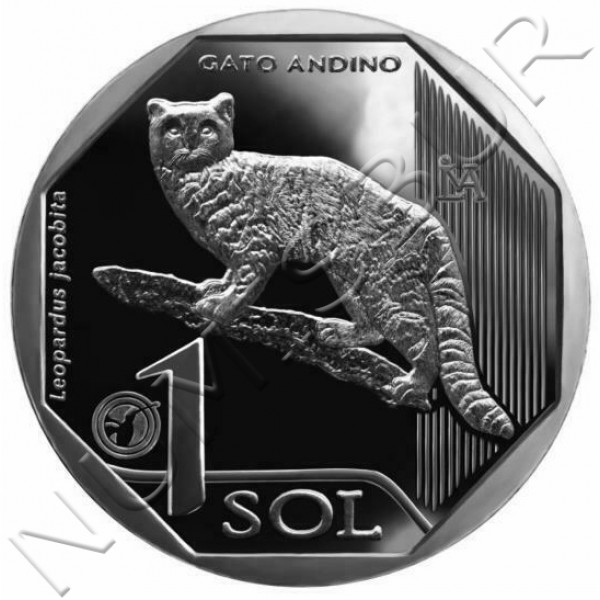 1 sol PERU 2019 - Gato andino