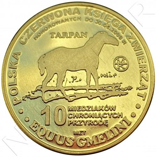10 miedziakow POLOND 2009 - Tarpan Horse