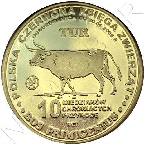 10 miedziakow POLOND 2009 - Tur Bison