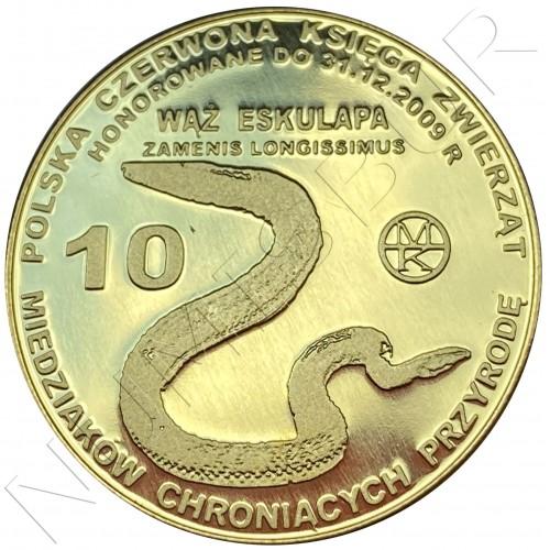 10 miedziakow POLOND 2009 - Snake Zamenis longissimus