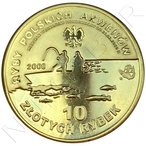 10 miedziakow POLOND 2008 - European Pike