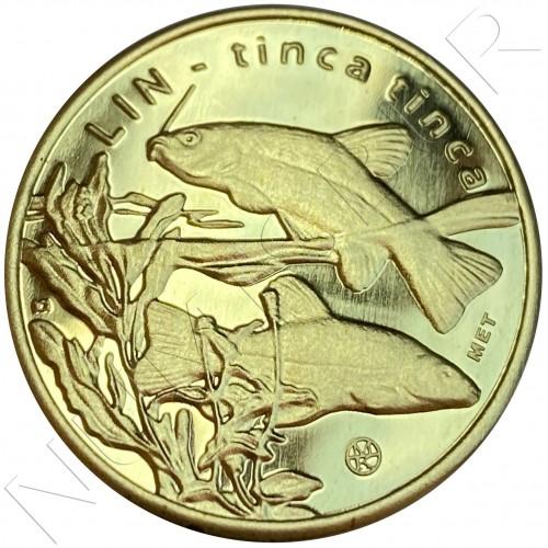 10 miedziakow POLOND 2009 - Tinca Tinca