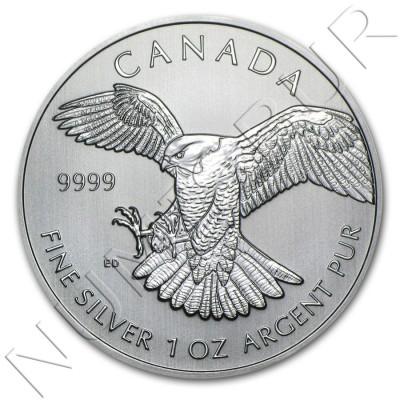 5$ CANADA 2014 - Halcon peregrino